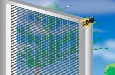 Fliegengitter Magdeburg bietet effektiven Insektenschutz